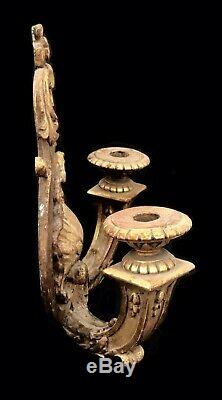 Applique Golden Wood Seashell Epoque XIX Emeecle