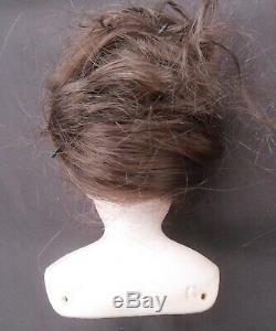 Jolie Parisienne Bust François Gautier Head Size 0 Period Late Nineteenth