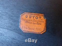 Planter Napoleon Iii, Walnut And Bronze Loupe, Maison Guyot, Xixth Time