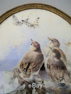 Aquarelle ovale signée Hector Giacomelli les oiseaux époque XIX ème siècle