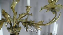 Paire De Chandeliers Louis XV Rocaille En Bronze Doré à5 Feux, époque XIX ème