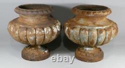 Paire De Vases De Jardin, Jardinières, En Fonte, Style Medicis, époque XIX ème