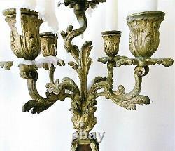 Paire de candélabres, bougeoirs en bronze doré, style Louis XV, époque XIX ème