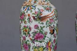 Paire de vase chinois en Canton aux oiseaux époque XIXème